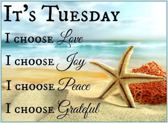 a22aee3b6bbdac72b5ea3e13ff7666bc--tuesday-greetings-happy-tuesday-quotes